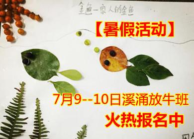 【暑假活动】7月9--10日溪涌放牛班,上山下海活动火热报名中