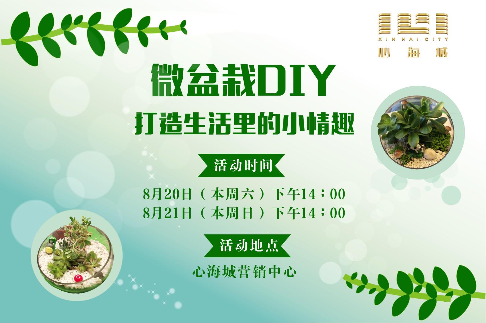 【生活美学】微盆栽DIY,打造生活里的小情趣