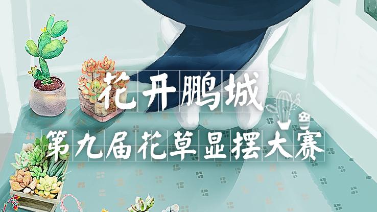 花开鹏城、绿色深圳,2018花草显摆大赛开始啦!